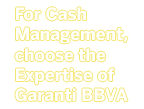 For Cash Management, choose the Expertise of Garanti BBVA